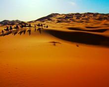 Έρημος Σαχάρα