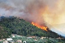 Φωτιά στο δάσος