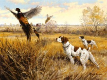 Σκυλί κυνηγός