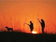 Κυνηγοί